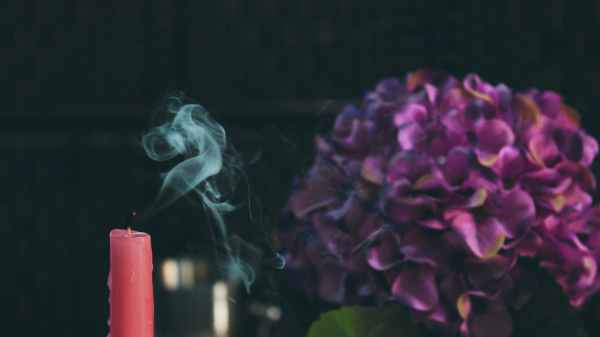 red pillar candle beside purple flower